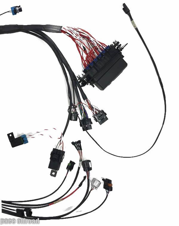 Diagram  2012 Wildcat 1000 Wiring Diagram Full Version Hd